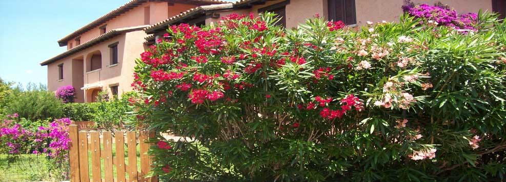 ATPR Case Vacanze Porto Rotondo Residence Home (5)